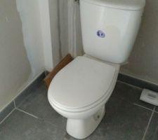 en faisant la cloisons des wc le carrelage a casse grrr