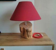 new lampe diy avec bouleau