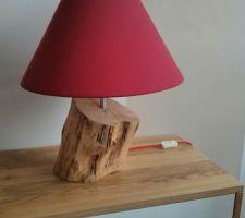 new lampe diy avec tronc de bouleau