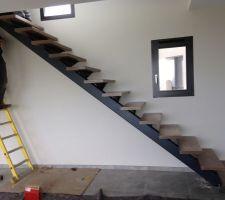 escalier limon central alu et marche bois