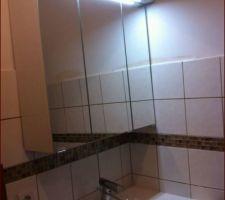 Armoire à miroirs dans la salle d'eau