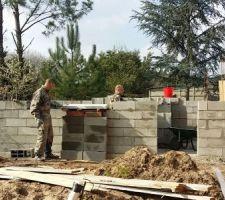 Abri de jardin - élévation des murs