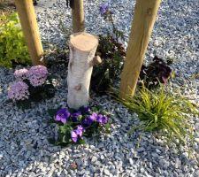 Déco de printemps au pied du murier platane