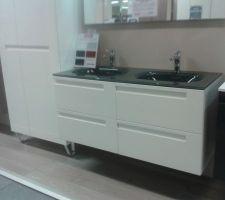 double vasque en verre gris