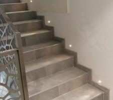 Photos et id es escalier d 39 interieur desservant le sous for Decoration descente escalier interieur
