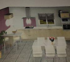 Plan 3D de la cuisine La grande table ne sera pas forcément à cette place elle sera un peu plus eloignée du Bar