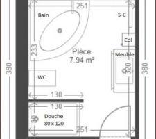 Voilà a quoi devrait ressembler notre future Salle de bains:  - Baignoire d'angle 140x140 avec Jets & Cromothérapie - Douche italienne 80x120 + Colonne de douche - Meuble Cedam 105cm avec vasque déportée, miroir LEd touch, anti-buée + colonne 30cm - Wc Suspendu Grohe  Maintenant, nous commençons à déterminer les emplacements des prises, interrupteurs, spots, lampes etc... quel boulot