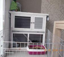 La maison de nos lapinous :)