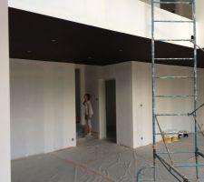 Plafonds foncés (noirs bruns)