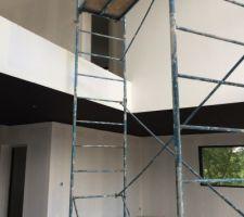 plafonds fonces noirs bruns