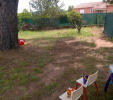 jardin nettoye des tas d epines et de branchages