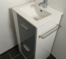 Lave main des toilettes
