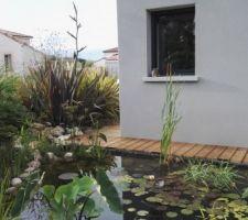 terrasse bois coursive le long du bassin