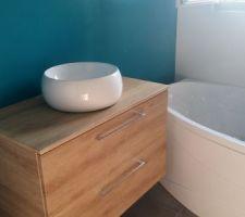 Vasque à poser sur meuble à tiroirs et robinet toboggan