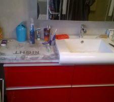 Vue sur la vasque et le robinet