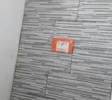 Carrelage du wc du rdc