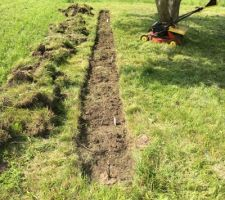Ca y est j'ai planté 8 framboisiers un mûrier et un cassissier. Comme ca je gagne 1 an pour que cela commence à produire des fruits..