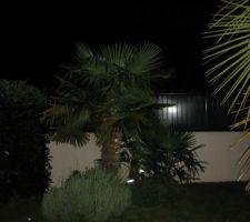 mis n place eclairage a led tres puissant sous les palmiers