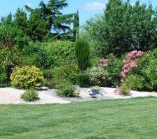 plantation de cypres rosiers