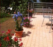 bords de la terrasse remblayes et semes