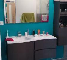 Meuble vasque et colonne de salle de bain en bois noir/taupe. Mur couleur bleu attol de chez Leroy Merlin