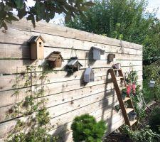 debut de collection de cabane a oiseaux