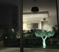 Vu du Salon le soir avec reflet.
