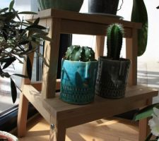 Poteries déco coin-cactus