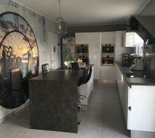 La cuisine et sa tapisserie en trompe l'oeil