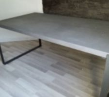 Table en béton cirée choisie (en 250 x 120 cm).