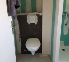 toilette du haut