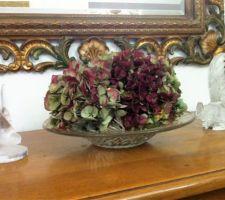 tetes d hortensias sechees