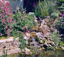 detail cascade bac filtrant rempli de plantes 2 elements de cascade en ciment 4 marches en pierre forment une haute cascade tout l entourage est en pierres de recup maconnees