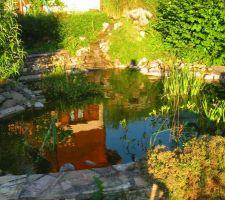 Abri de jardin se mirant dans le bassin au soleil de fin d'après-midi