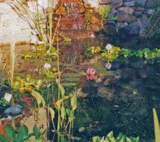 En souvenir de Monet à Giverny