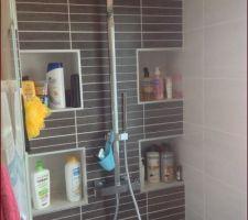salle de bains avec sa douche et ses niches