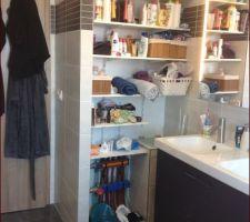 Salle de bains. Reste à trouver un rideau pour fermer ce placard. En dessous non visible à cause du meuble, une ouverture pour le linge sale qui descend directement près de la machine à laver.