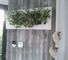 Cadre végétal sur mur de lambris