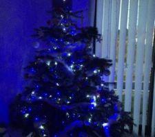 Premier Noël dans la maison !