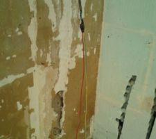 voila ce qu on a pu trouver a plusieurs reprises dans les murs de la cuisine un peu moyen non