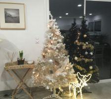 Premier Noël dans notre nouvelle maison.