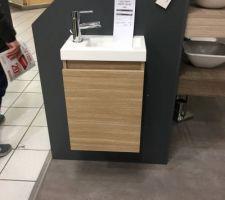 Lave mains toilettes du rdc