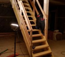 Escalier provisoire 4