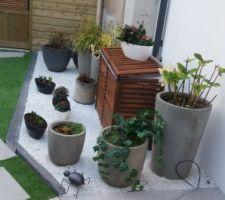Maintenant il faut attendre le printemps pour planter ,peindre le mur de la voisine