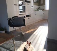 Holly qui prend un bain de soleil