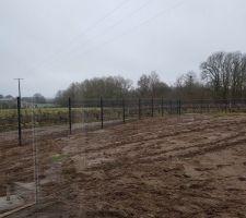 Pose de la clôture réaliser par vinerier 37. 56 mêtres en 1 journée. Les mecs ont bien bossé.