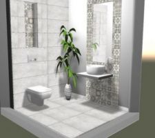Idee wc rdc