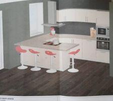Voilà le plan de la cuisine ! il manque l'évier, il sera côté mur la où il y a le meuble à 2 portes! La cuisine vient de chez Frank Marti Design