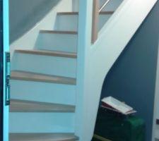 Et voici notre bel escalier peint. La photo étant prises de nuit, qualité pas top.