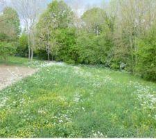 photo terrain au printemps